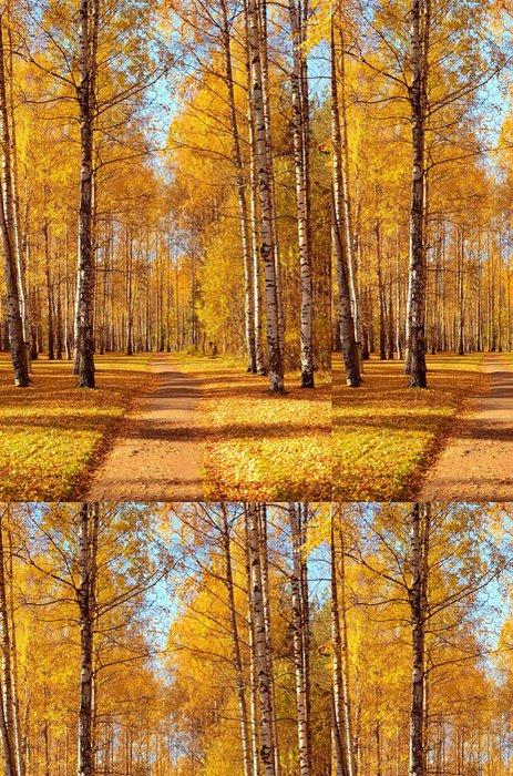 Vinylová Tapeta Podzimní park - Roční období