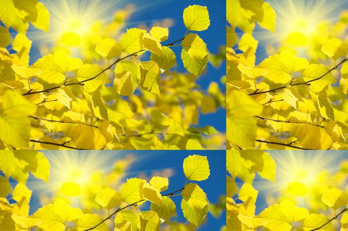 Tapeta Pixerstick Podzimní pozadí - Roční období