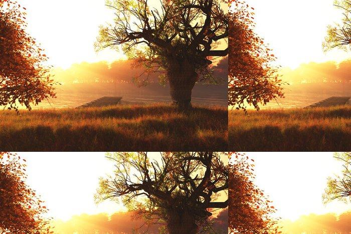 Tapeta Pixerstick Podzimní slunce / Sunrise na 3D jezera činí - Témata