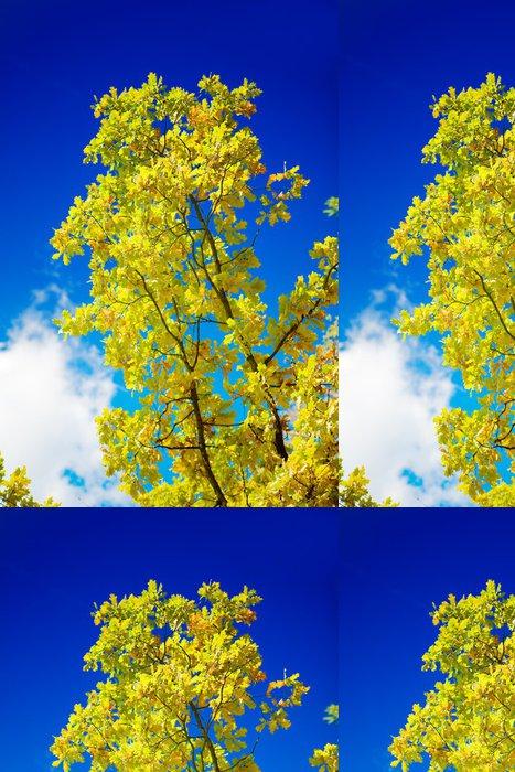 Tapeta Pixerstick Podzimní strom na pozadí nebe - Venkov