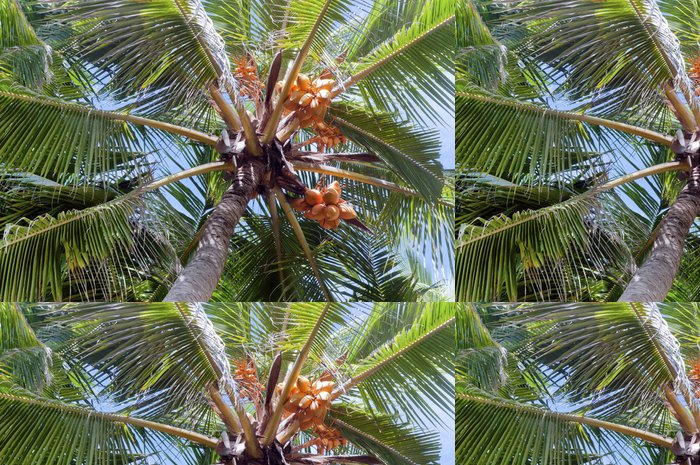 Tapeta Pixerstick Pohled do koruny palmy - Asie