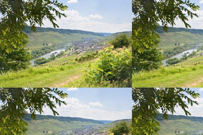Tapeta Pixerstick Pohled na údolí Mosely a řeky Mosely v letní den, Německo - Evropa