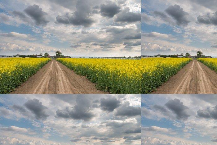 Tapeta Pixerstick Pole řepky - Zemědělství