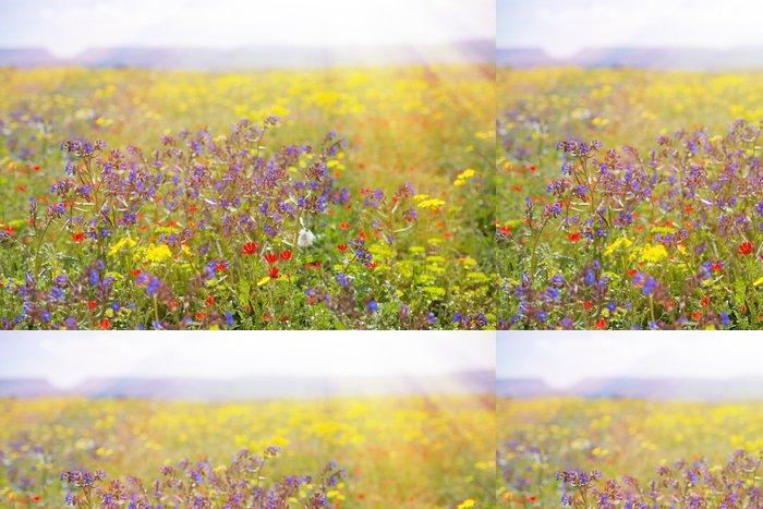 Tapeta Pixerstick Pole s trávou, fialové květy a červené. - Svoboda