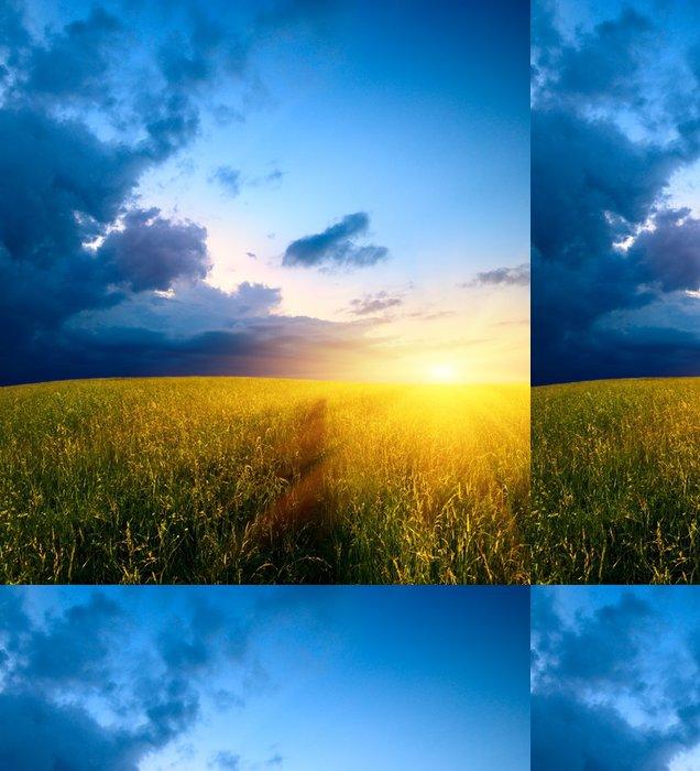 Tapeta Pixerstick Pole trávy a západ slunce - Roční období