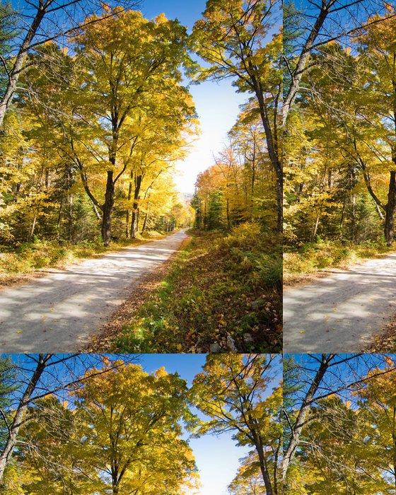 Tapeta Pixerstick Polní cesta přes nádherný les - Roční období