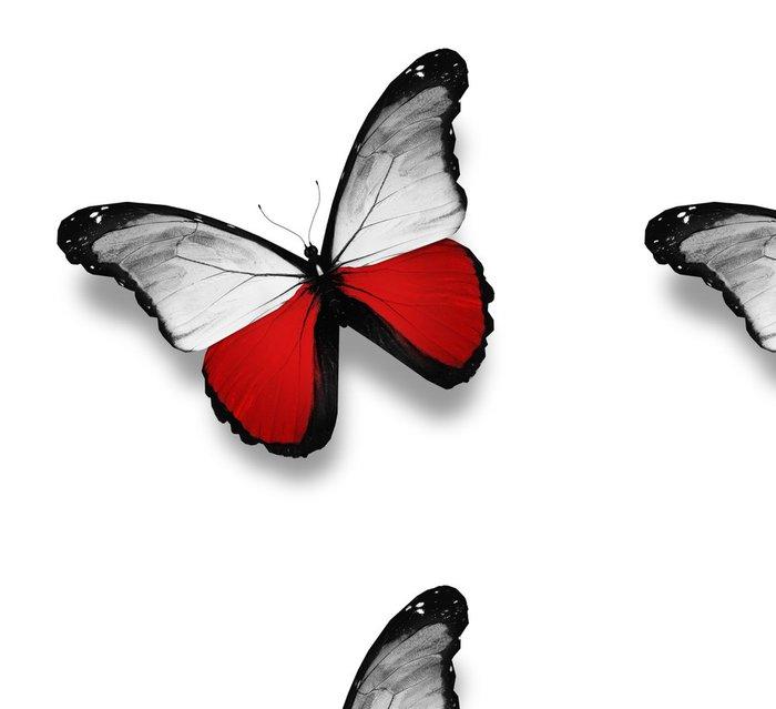 Tapeta Pixerstick Polská vlajka motýl, izolovaných na bílém - Národní svátky