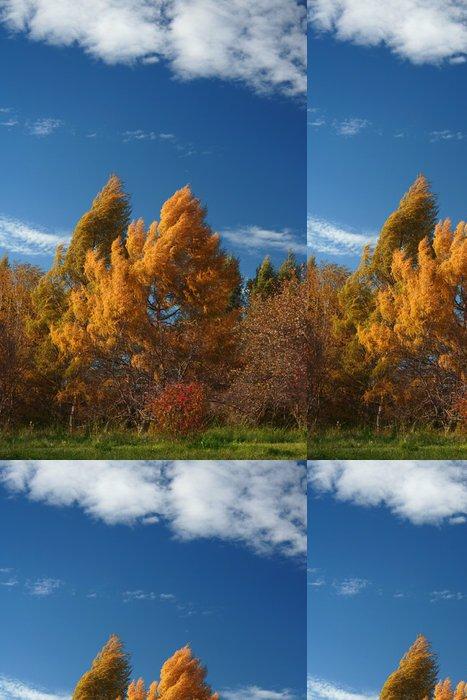 Vinylová Tapeta Pozdní podzimní krajina - Lesy