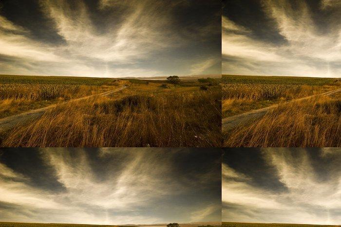 Tapeta Pixerstick Prázdné pole a dramatické nebe - Venkov