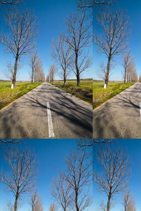 Tapeta Pixerstick Prázdné silnici pod modrou oblohou, přes řadami stromů - Lesy