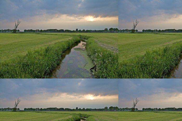 Tapeta Pixerstick Příkop v holandské krajiny pod zatažené večerní obloze - Venkov
