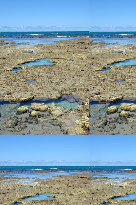 Tapeta Pixerstick Přírodní bazény Maragogi - Amerika