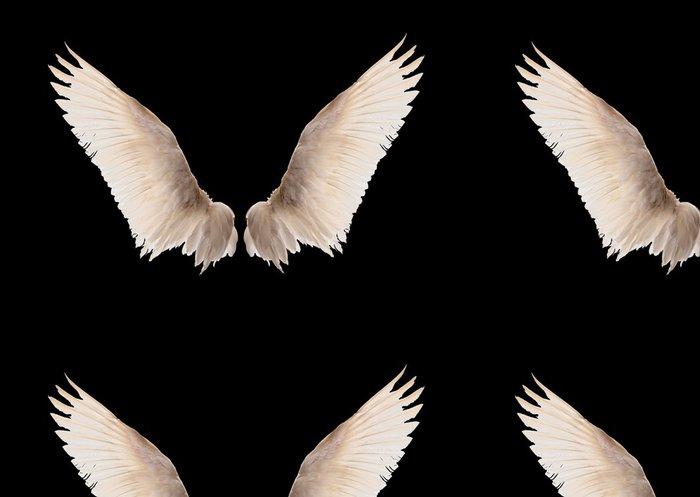 Tapeta Pixerstick Přírodní bílá husí křídla. Izolace. - Imaginární zvířata