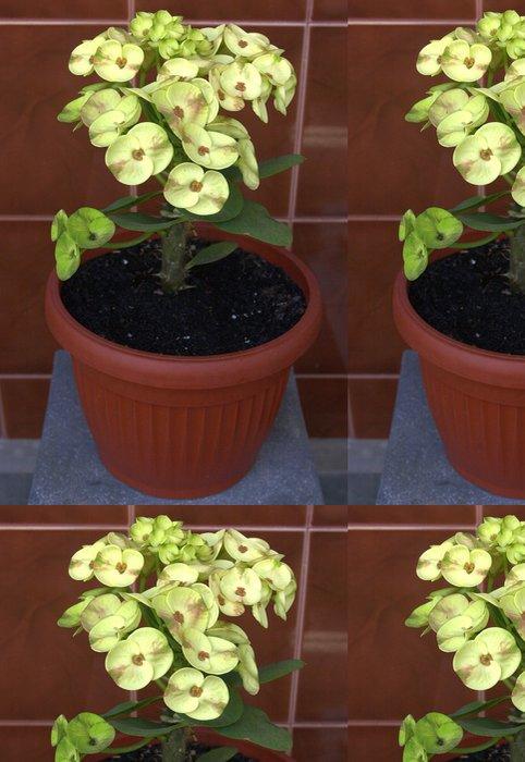 Tapeta Pixerstick Pryšec zářivý-mili žlutý květ - Zemědělství