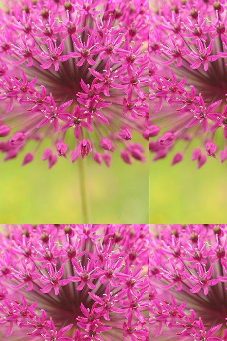 Tapeta Pixerstick Purple garden flower - Roční období