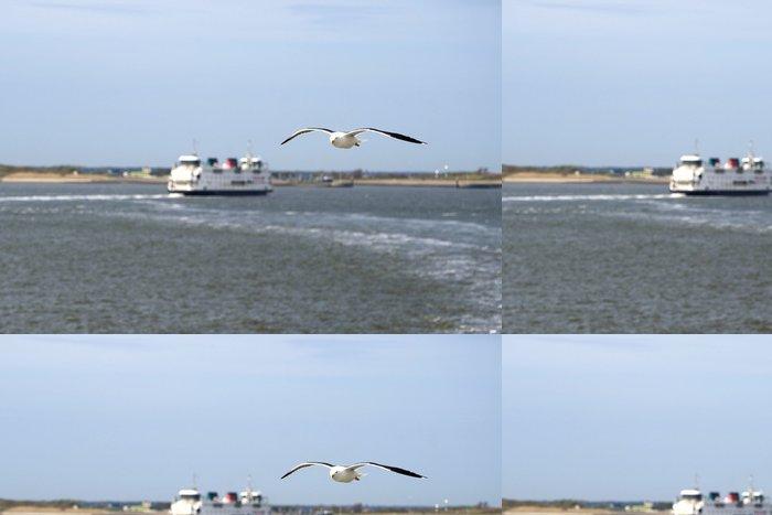 Tapeta Pixerstick Racek je létání v přední části trajektu - Ptáci