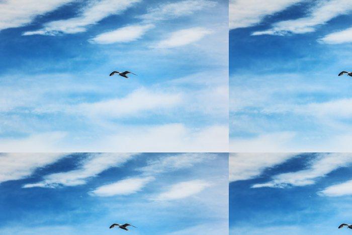 Tapeta Pixerstick Racek pták létání v modré obloze - Ptáci