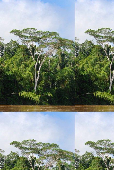 Tapeta Pixerstick Rainforest, Amazon - Amerika