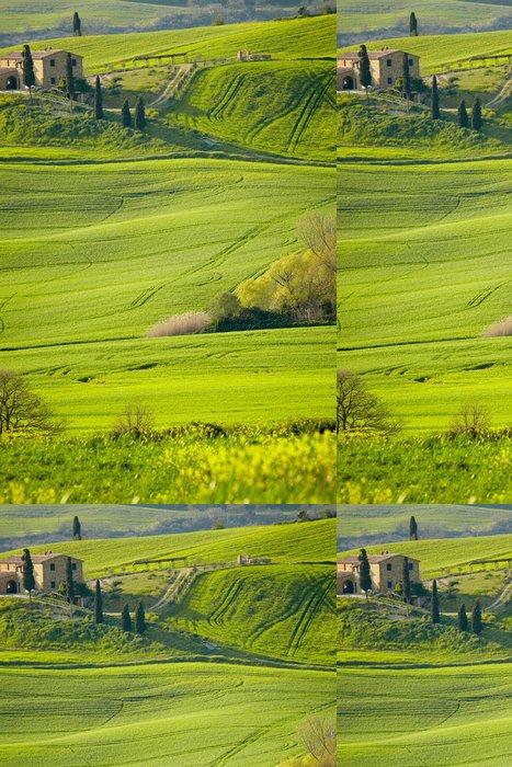 Tapeta Pixerstick Ráno na venkově v Toskánsku - Zemědělství