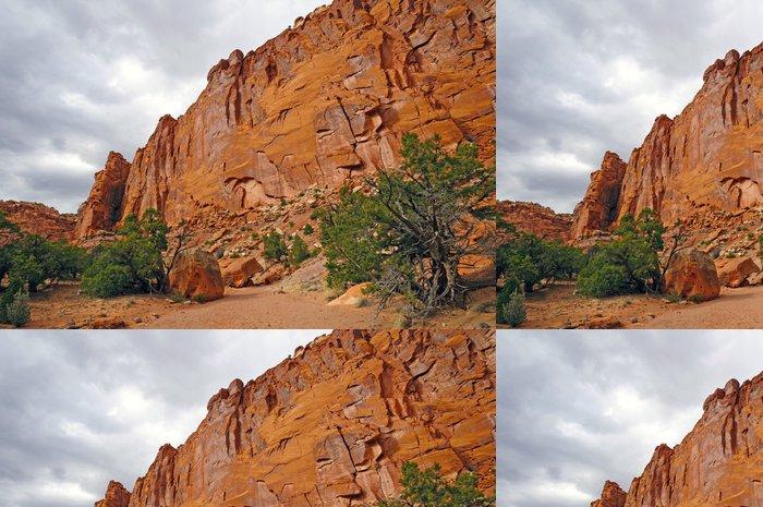 Tapeta Pixerstick Red Cliffs v Desert Canyon - Pouště