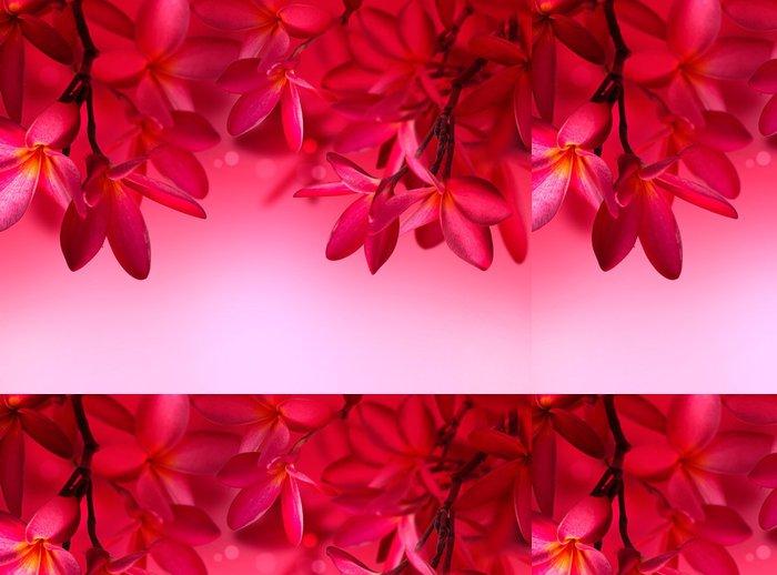 Tapeta Pixerstick Red Frangipani květ na růžovém pozadí - Květiny