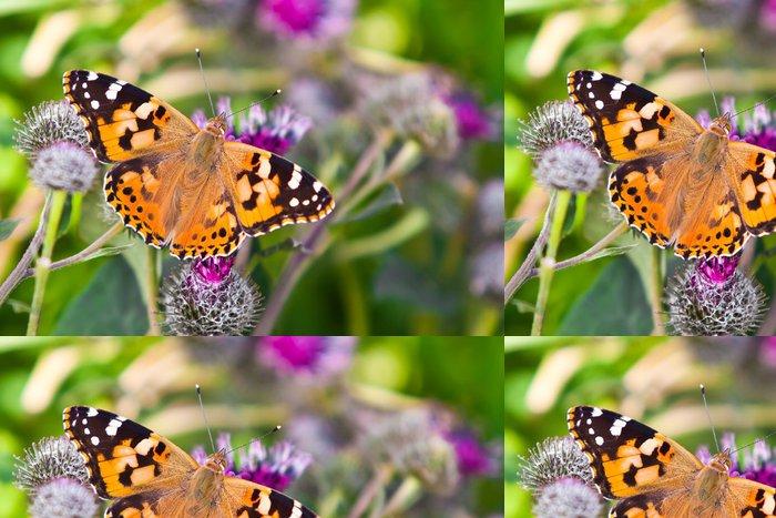 Tapeta Pixerstick Red-haired motýla detailní - Témata