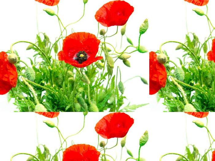 Tapeta Pixerstick Red Poppy - Témata