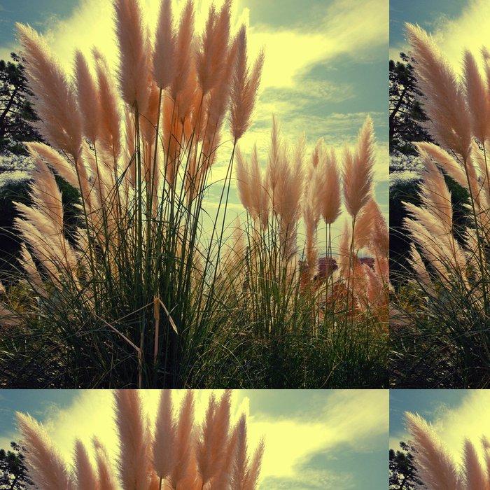 Tapeta Pixerstick Reed na pozadí oblohy - Rostliny