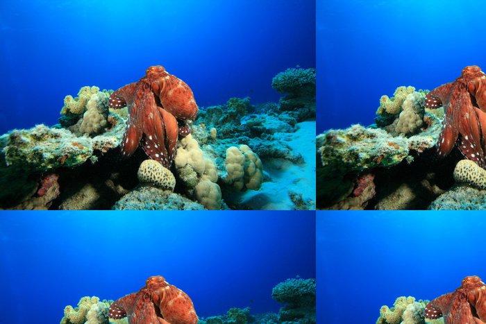 Vinylová Tapeta Reef chobotnice (octopus cyaneus) - Vodní a mořský život
