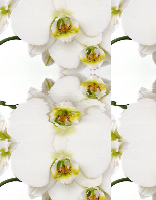 Tapeta Pixerstick Reflet - Témata