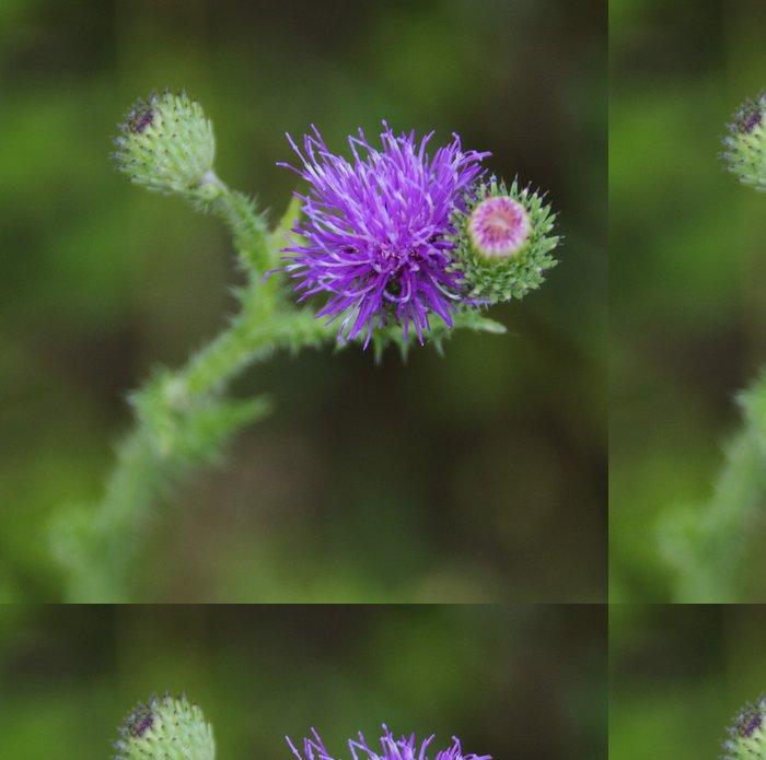 Tapeta Pixerstick Řepík květina - Květiny