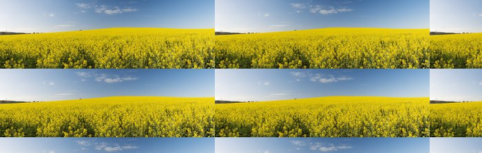 Tapeta Pixerstick Řepka pole Panorama - Zemědělství