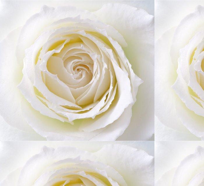 Vinylová Tapeta Rose, růže - Květiny