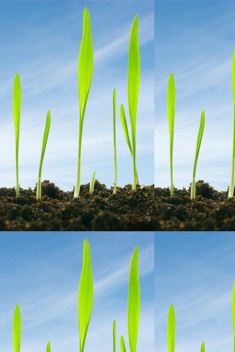 Tapeta Pixerstick Rostliny proti obloze - Roční období
