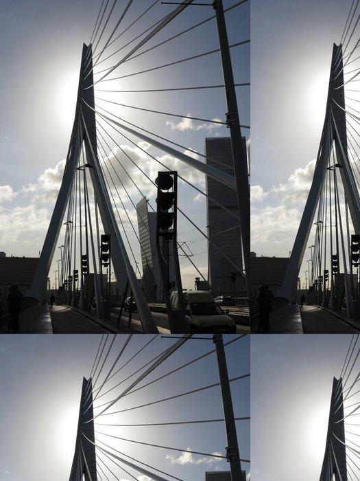 Tapeta Pixerstick Rotterdam, Erasmus most, Nizozemsko - Infrastruktura