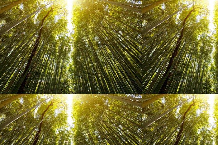 Tapeta Pixerstick Rozkvět bambusové lesy s slavnou ranním slunci - Přírodní krásy