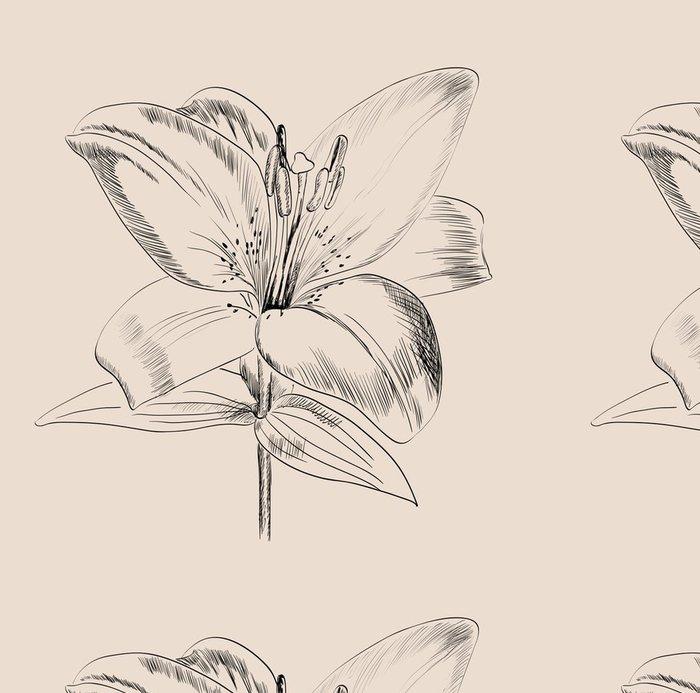 Vinylová Tapeta Roztomilé tapety s liliemi. Ručně kreslená ilustrace. - Prvky podnikání