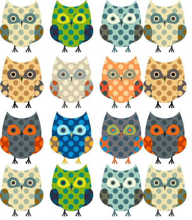 Tapeta Pixerstick Roztomilý vektorové kolekce sov - Ptáci