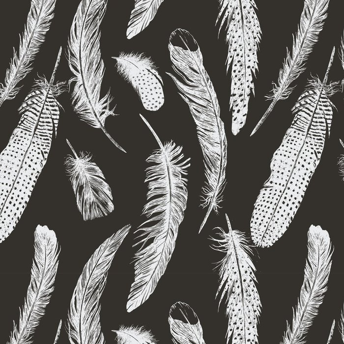 Tapeta Pixerstick Ručně tažené vintage vzorek s peřím. Vektor. - Zvířata