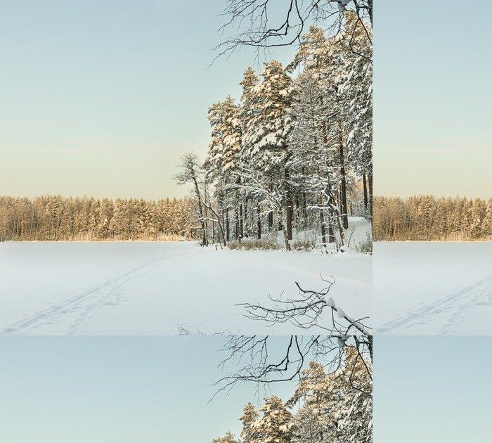 Tapeta Pixerstick Ruská zima jezero pokryté sněhem a ledem - Mezinárodní svátky