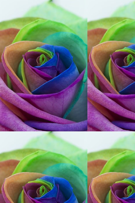 Tapeta Pixerstick Růže duha - Květiny