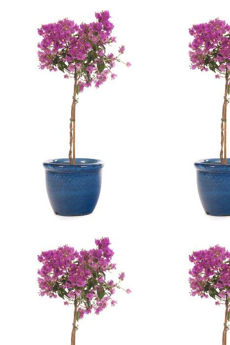 Tapeta Pixerstick Růžová Bougainvillea - Květiny