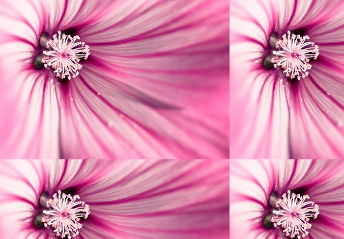 Tapeta Pixerstick Růžová květina - Domov a zahrada
