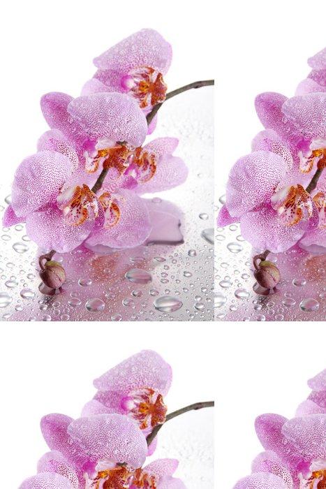 Tapeta Pixerstick Růžové krásné orchideje s kapkami - Květiny