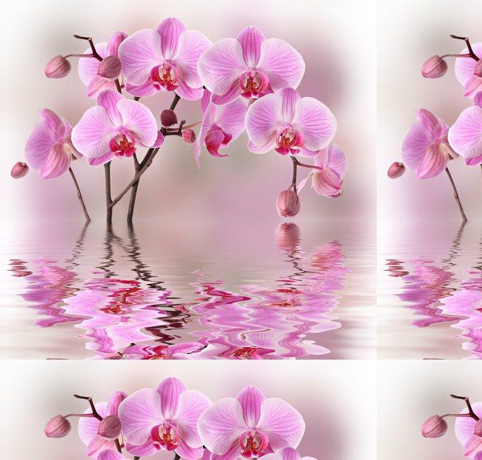 Tapeta Pixerstick Růžové orchideje s vodou reflexe - Témata
