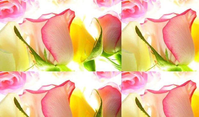 Tapeta Pixerstick Růžové růže - Témata