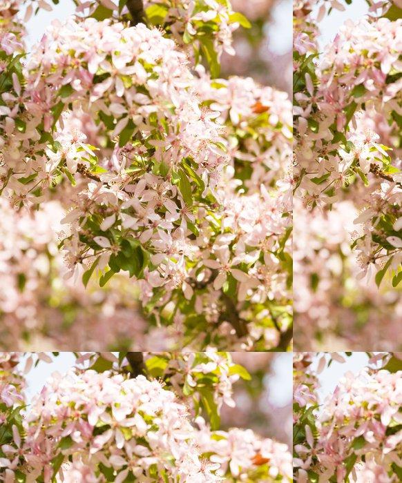 Tapeta Pixerstick Růžové třešňové květy - Květiny