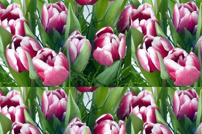 Vinylová Tapeta Růžové tulipány zblízka - Květiny