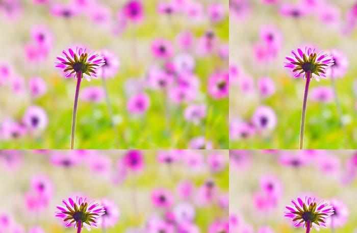 Tapeta Pixerstick Růžový květ pole - Struktury