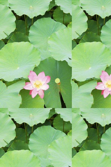 Vinylová Tapeta Růžový lotosový květ - Květiny